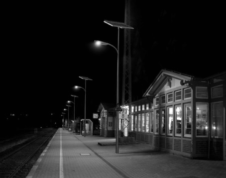 Leadsun Streetlight